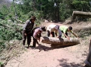Update on 56-Kilometer Road Project in El Palmar