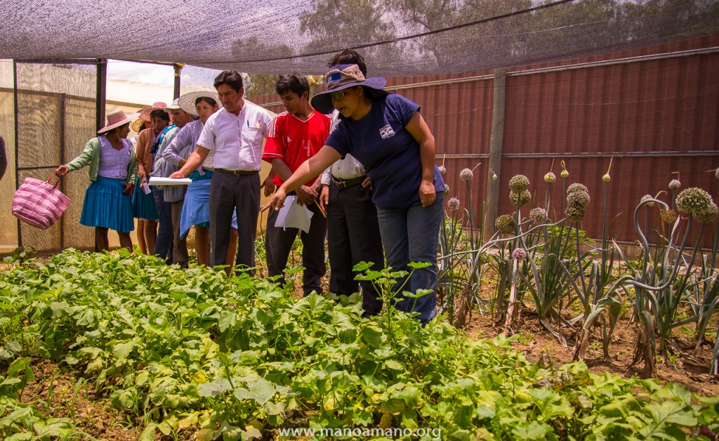 Mano a Mano engineer Camilia Yavira discusses growing vegetables in semi-shade with community leaders from Lapiani. January 18, 2016.