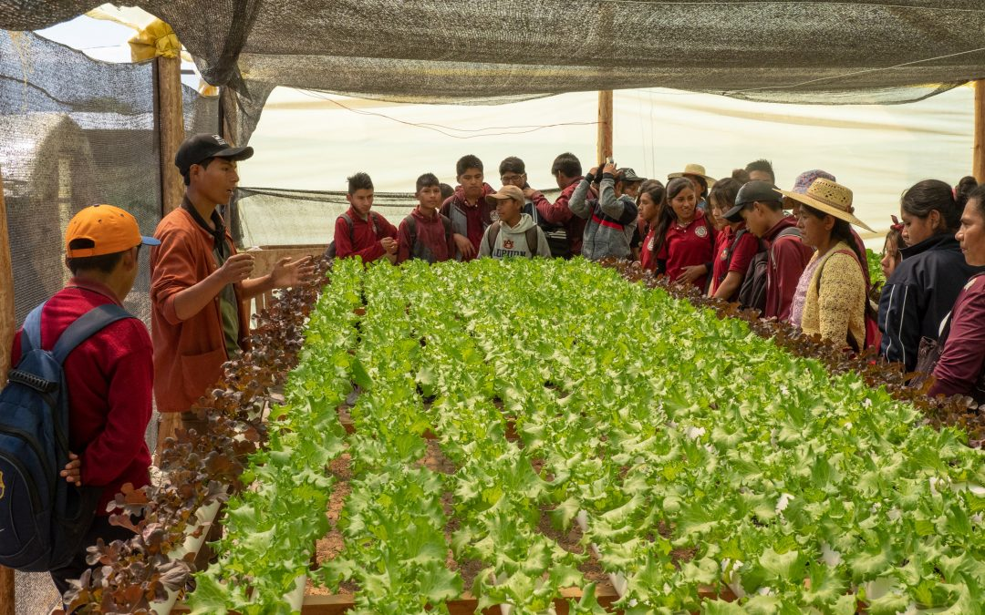 5,359 People Visited the Center for Ecological Agriculture in 2019
